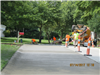 Annual Concrete Repair Program - Fox Run